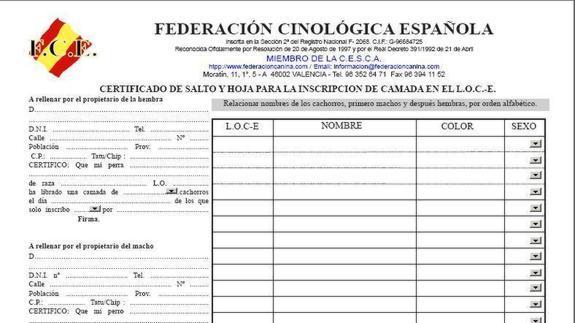 Asombroso Hoja De Pedigrà Escuela Media Bosquejo - hojas de trabajo ...