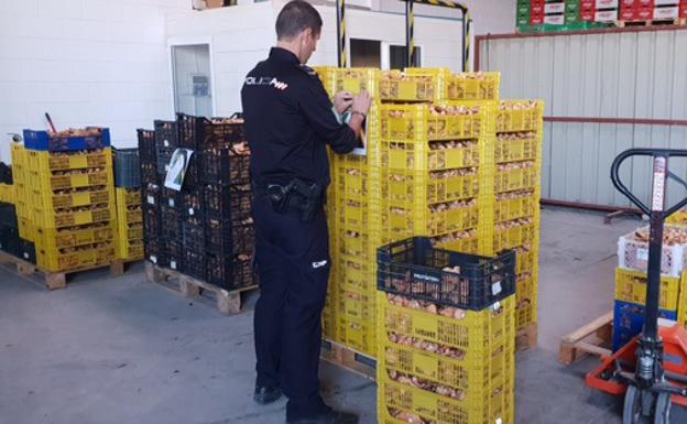 43b045020345d La Policía Autonómica se incautó la semana pasada de una tonelada de  níscalos en Caniles.
