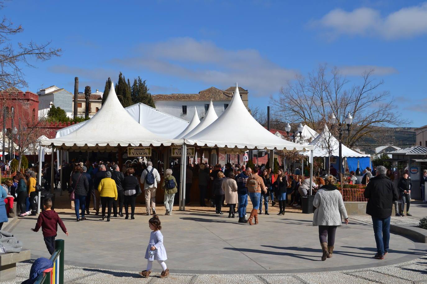 Fotos La Octava Fiesta Del Vino De Alhama De Granada En Imágenes Ideal